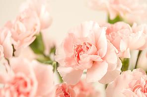Emotion Flower(uac10uc131 ud50cub77cuc6cc) B1_038