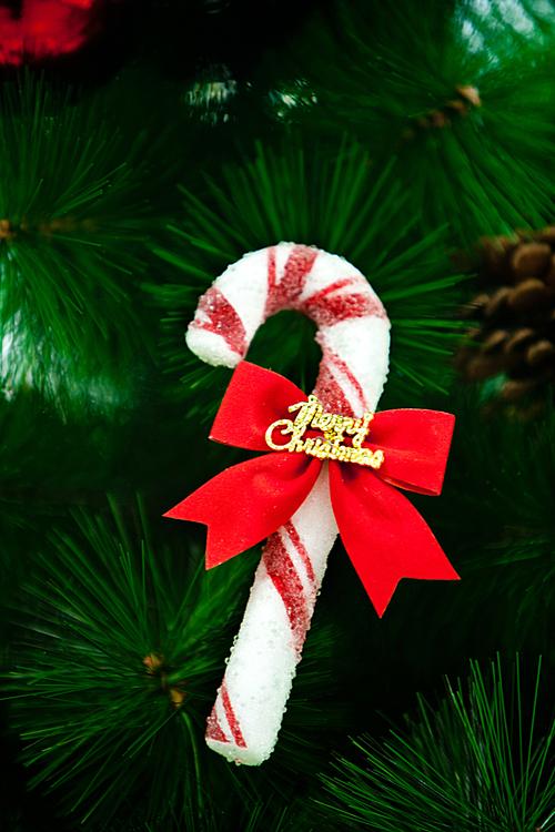 Christmas Object(ud06cub9acuc2a4ub9c8uc2a4 uc18cud488)029