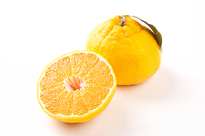 과일 pho140_158