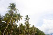 [PHO273] 보라카이 058