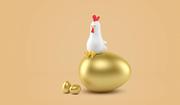 Chicken 001