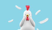 Chicken 017
