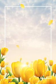 봄이왔나봄 001