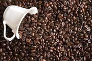 커피&티 114