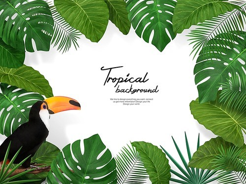 Tropical Background 002
