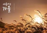 가을 감성 캘리 편집5 (GIONE)