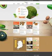 [Webdesign] 웹사이트 시안_생협