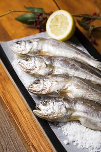 Seafood 137