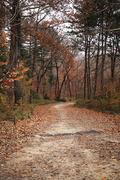 가을 풍경 041