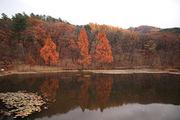 가을 풍경 058