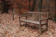 가을 풍경 076