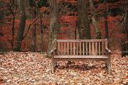 가을 풍경 077