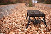가을 풍경 086