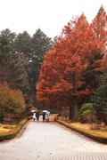 가을 풍경 088