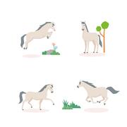 동물아이콘 066