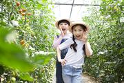 어린이농촌체험 075
