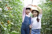 어린이농촌체험 119