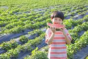 어린이농촌체험 250