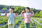 어린이농촌체험 258