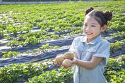 어린이농촌체험 285