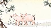 돼지해 001