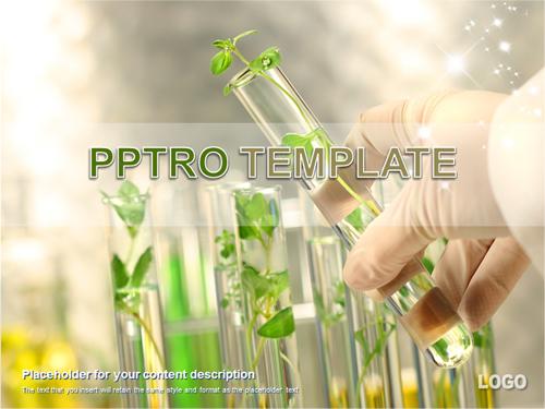 식물배양 실험 배경