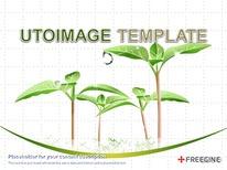 식물 자연 디자인