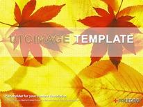 가을낙엽 디자인