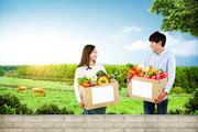우리 농산물 011