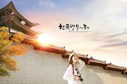 한국관광 010