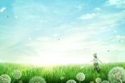 봄이왔나봄 002