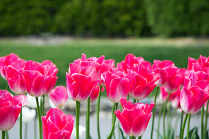 봄 143