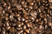 커피&티 085