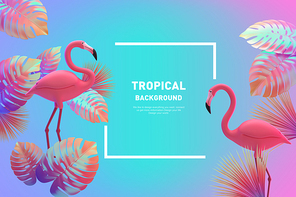 Tropical Background 003