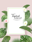 Tropical Background 005
