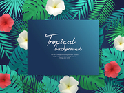 Tropical Background 010