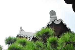 전주 한옥마을 지붕