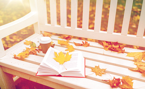 season, literature, education and people concept - close up of young woman reading book and drinking coffee from paper cup in autumn park