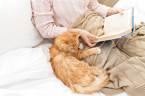 pets, hygge and people concept - red tabby cat and female owner reading book in bed at home