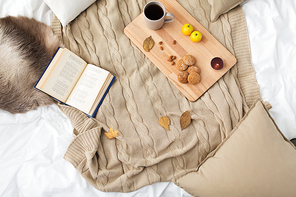 hygge and cozy home concept - cookies, lemon tea, book and leaves in bed