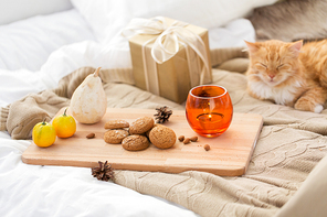 hygge and christmas concept - oatmeal cookies, candle, gift and red tabby cat lying in bed