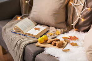 hygge and cozy home concept - lemons, book, almond nuts and oatmeal cookies on sofa