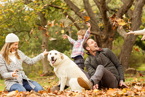 Young family with a dog in leaves on an autumns day