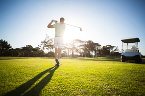Rear view of male golfer taking shot while standing on field
