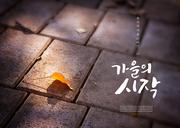 가을 감성 캘리 편집4 (GIONE)