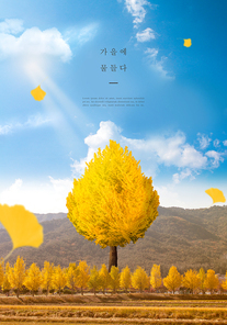가을 감성 편집2(HYUN)
