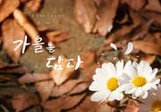 가을 풍경 감성 캘리4(HYUN)