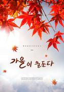 가을 풍경 감성 캘리5(HYUN)