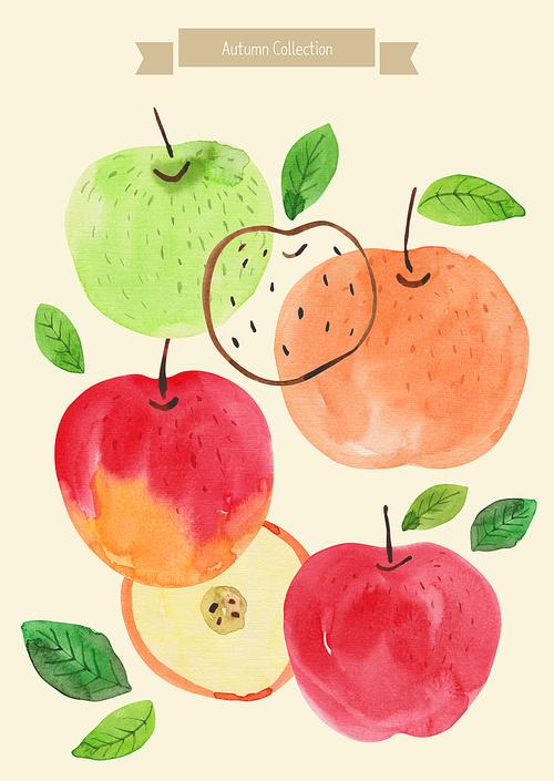 [일러스트레이션]가을수채화-사과
