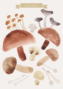 [일러스트레이션]가을수채화-버섯